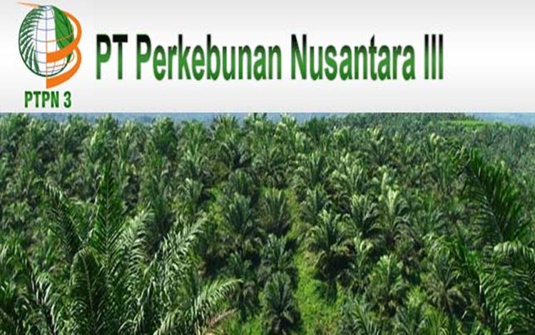 Setelah Presiden Tambah Modal Rp6,1 Triliun, Mari Berharap PTPN III Tingkatkan Kapasitas