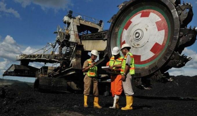 Diversifikasi Bisnis Batu Bara, Bukit Asam (PTBA) Siapkan Capex Rp3,8 Triliun