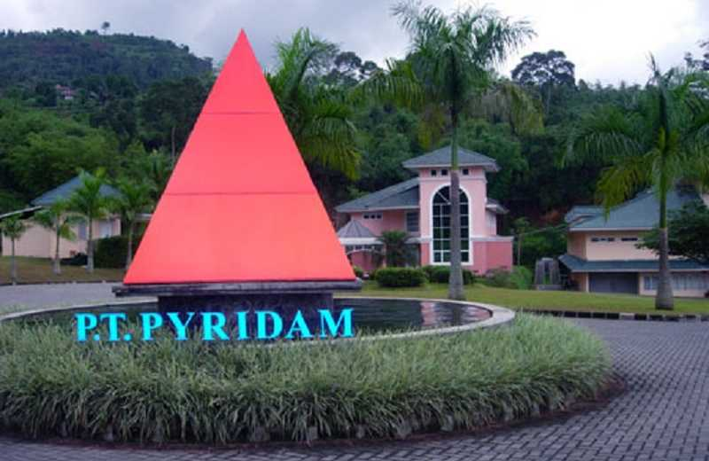 PYFA Sinergi, Pyridam Farma (PYFA) Pasarkan Produk Kesehatan LGI Corp