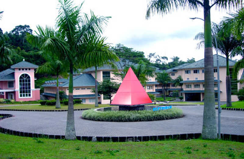 PYFA Global Investment Borong Saham Pyridam Farma (PYFA) Rp35,3 Miliar