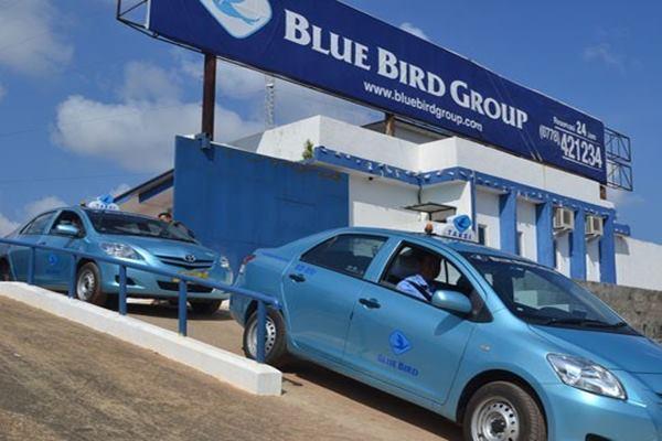 Tambah Lagi, Kini Adrianto Borong 1,52 Juta Saham Blue Bird (BIRD)