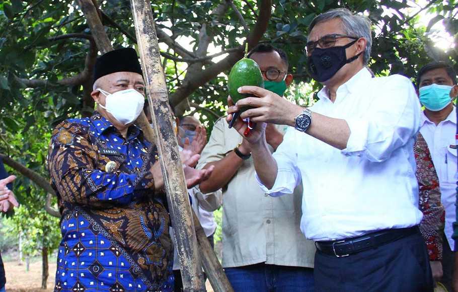 OJK dan IJK Bentuk Ekosistem KUR Klaster Pertanian dan Peternakan di Gorontalo