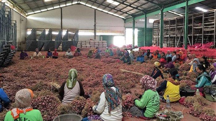 Kemendag-Bappenas Siapkan Percontohan Gudang Korporasi Petani Senilai Rp50 Miliar